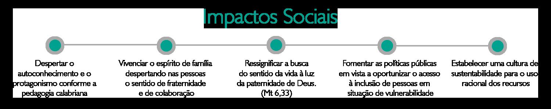 Gestao_SocialImpacts